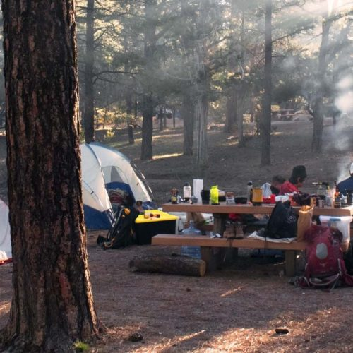 Group camping near picnic table in the Delta