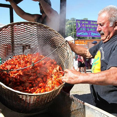 Boiled crawdads in a bucket for a food festival