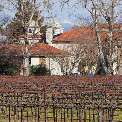 Wineries in the Delta