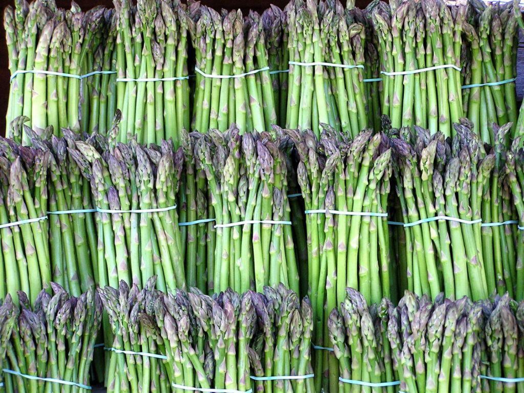 Bundles of Asparagus stacked