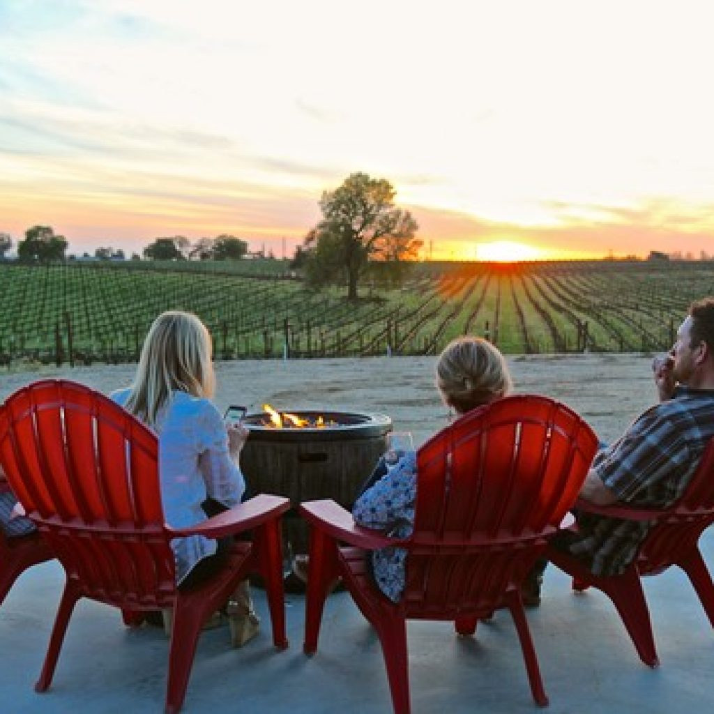 People sitting around a campfire viewing the vineyards during sunset