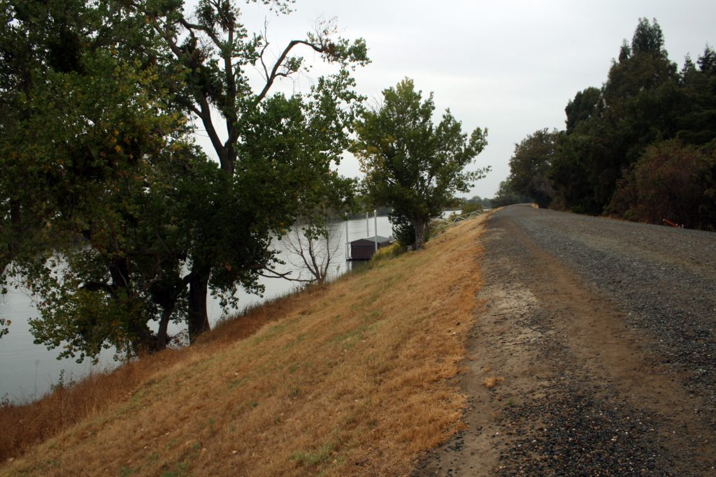 View of the Sacramento River Levee