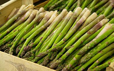 California Delta Asparagus at the San Joaquin Asparagus Festival