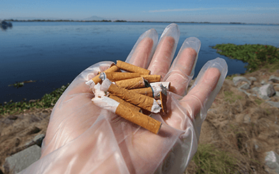 Cigarettes on palms of a hand