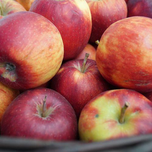 Delta apples