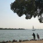 Delta fishing views