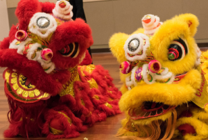 Lion dancer costumes