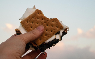 s'more sandwich