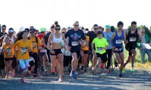Runners starting a racw