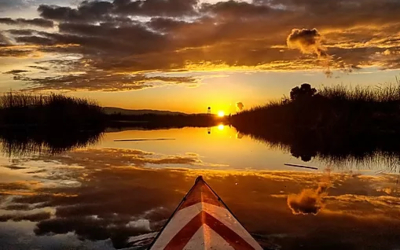 paddling in the sunset
